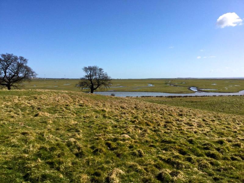 Elmley Nature Reserve width=